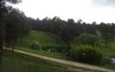 Montebelo Open