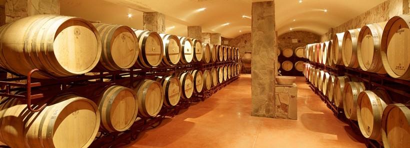 Boutique Wine Estate  - Business plan