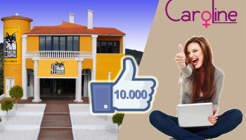 ALT_627 Mestre Raposa Doors & Windows Facebook