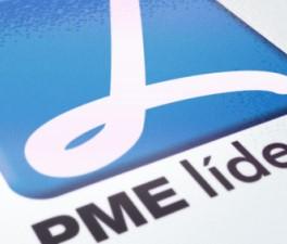 SME Leader 2010 - 2017